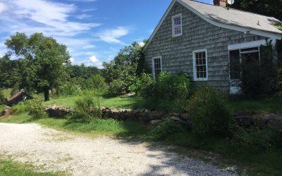 "Rent the ""Gray Owl"" Cottage on our Hunt-Parker Sanctuary"