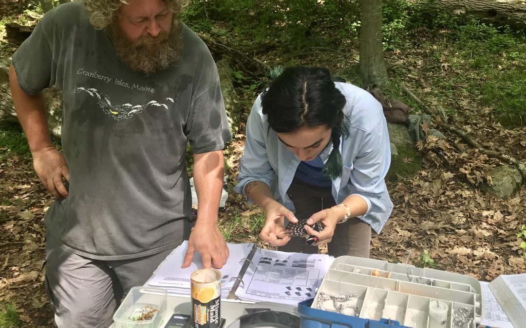 Bedford Audubon Society Marks 10th Anniversary of MAPS Program