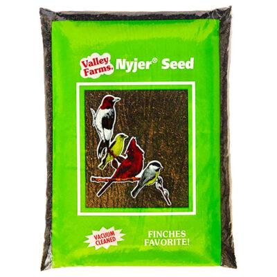 Nyjer Seed
